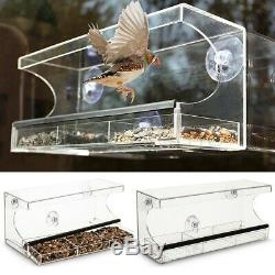 3 Compartment Glass Window Clear Viewing Bird Feeder Table Seed Suction Perspex