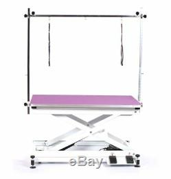 Pedigroom professional electric dog pet grooming table with H frame bar purple