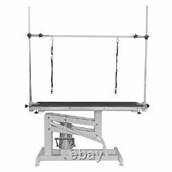 Pisces Large Professional Hydraulic Dog Grooming Parlour Table With Arm & Leash