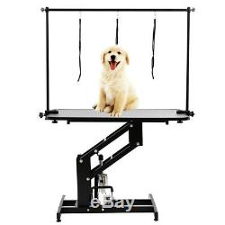 Professional Hydraulic Dog Cat Grooming Table Pet Bath Beauty Spa H Arm Z Lift