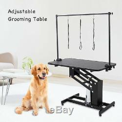 Grand Heavy Duty Hydraulique Dog Grooming Table Station Avec H Arm Bar Uk Leash